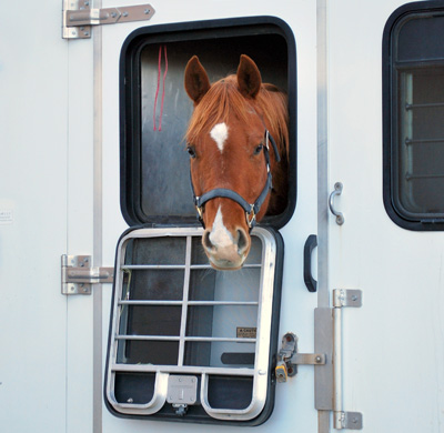 LGhorses location de camions